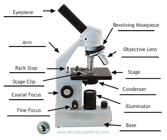 what is the resolving power with regard to a microscope
