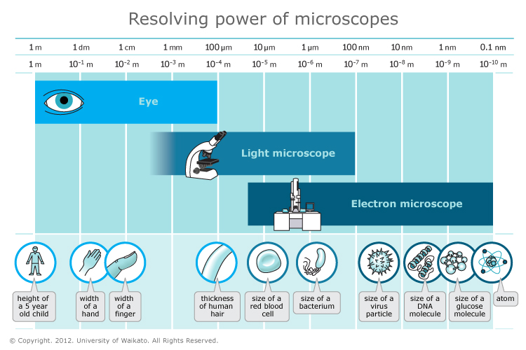 what is meant by the resolving power of a microscope