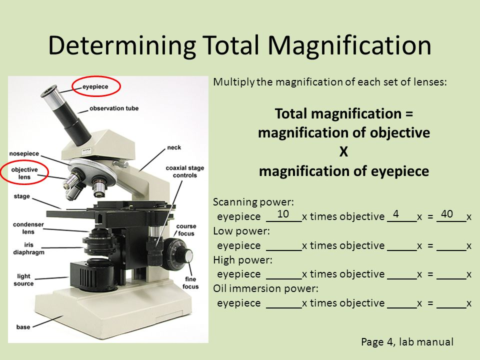 how is the total magnification of a microscope determined
